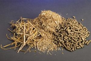 Linia do produkcji pelletu ze słomy – czy warto w nią inwestować?